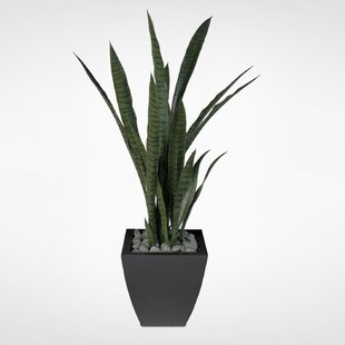 indoor artificial floor plants | wayfair.ca