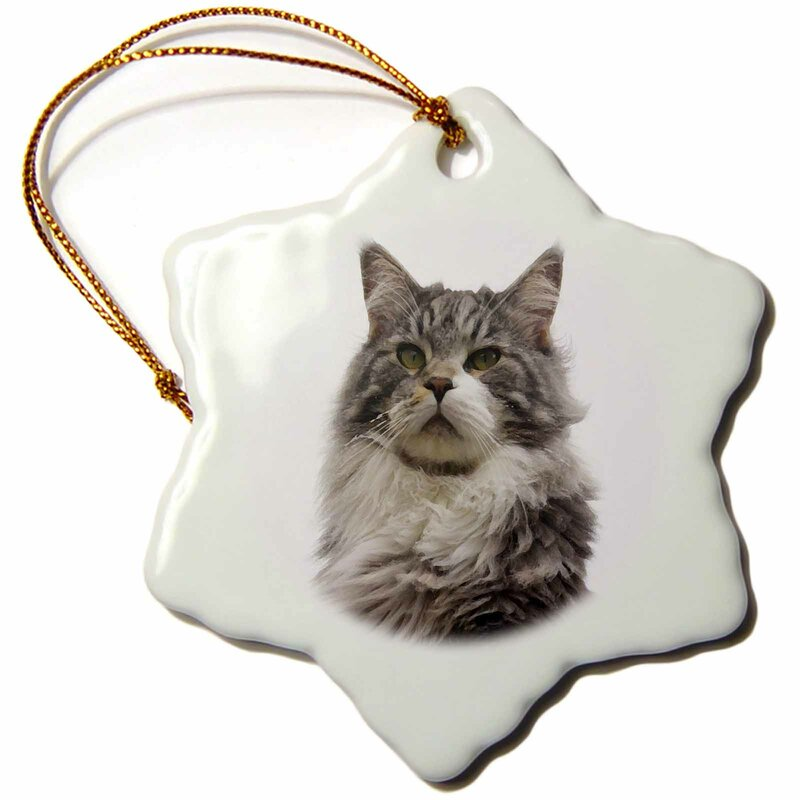 The Holiday Aisle Print Of Maine Coon Cat Snowflake Holiday Shaped Ornament Wayfair