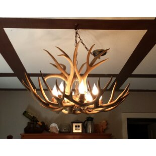 Loon Peak Doliya Antler Mule Deer Single Tier 6-Light We have associated to option Chandelier