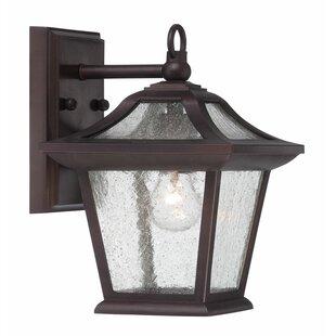 Winston Porter Vanleer 1-Light Outdoor Wall Lantern
