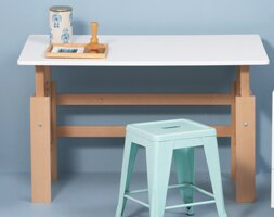 Ariella 115cm Writing Desk By Harriet Bee