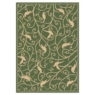 Rachael Green Indoor/Outdoor Area Rug