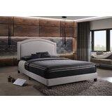 Cragmere Queen Upholstered Low Profile Platform Bed by Red Barrel Studio®
