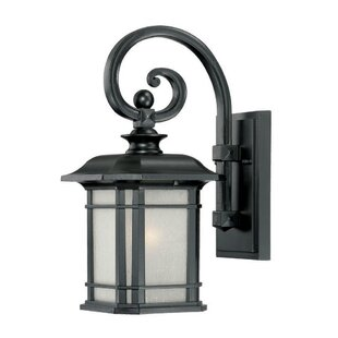 Broadmoor 1-Light Outdoor Wall Lantern by Darby Home Co