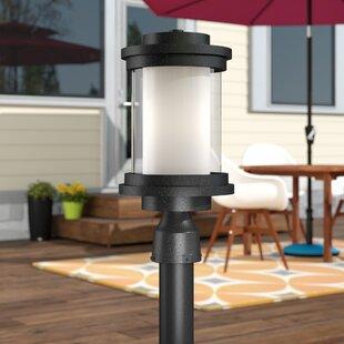 Brayden Studio Percival Outdoor 1-Light Lantern Head