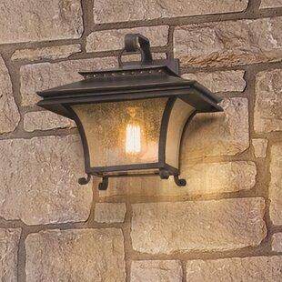 Fleur De Lis Living Colesville 1-Light Outdoor Wall Lantern