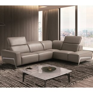 Orren Ellis Norwell Leather Reclining Sectional