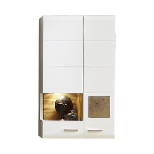 Florida Wall Mounted Display Cabinet With Lighting By 17 Stories