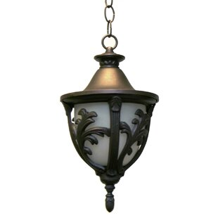 Bargain Phillipstown 1-Light Outdoor Pendant By Alcott Hill