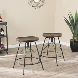 Parrish 24 Swivel Bar Stool (Set of 2)