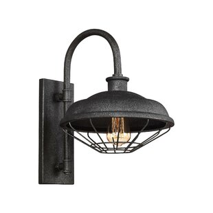 Januario 1-Light Metal Shade Outdoor Barn Light
