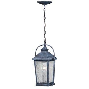 August Grove Goldie 1-Light Outdoor Hanging Lantern