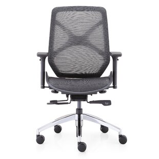 Prall Ergonomic Mesh Task Chair
