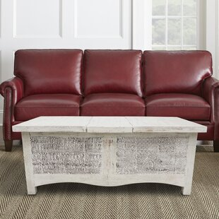 Greenpoint Coffee Table with Storage