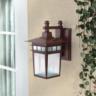 Hannon 1-Light Outdoor Wall Lantern by Alcott Hill