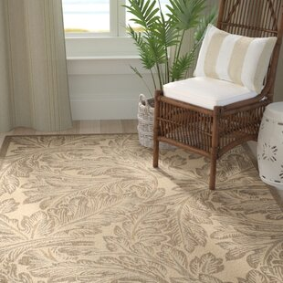 Amaryllis Natural/Chocolate Indoor/Outdoor Area Rug by Bay Isle Home