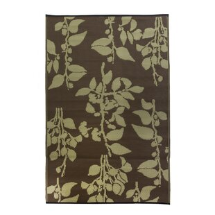 Premier Home Hand-Woven Brown Indoor/Outdoor Area Rug by Fox Hill Trading