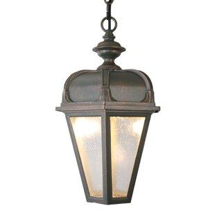 Charlton Home Flannigan 1-Light Outdoor Hanging Lantern