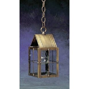 300 Series 1-Light Outdoor Hanging Lantern