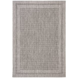 Haddad Gray Indoor/Outdoor Area Rug