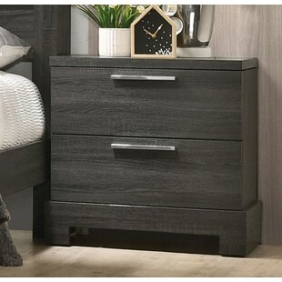 Sunglow 2 Drawer Nightstand by Brayden Studio