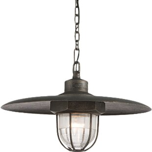 Troy Lighting Acme LED Dome Pendant