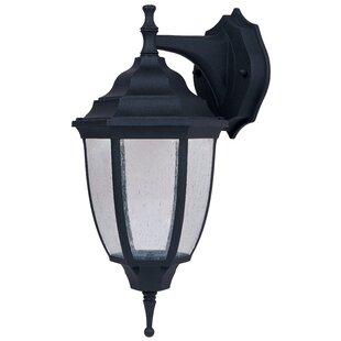 Charlton Home Kuehn 1-Light Outdoor Wall Lantern