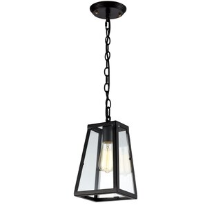 Williston Forge Camile 1-Light Lantern Pendant