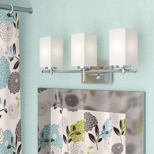 Catawissa 3-Light Vanity L..