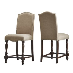 Darby Home Co Hilliard Dinings Chair (Set of 2)