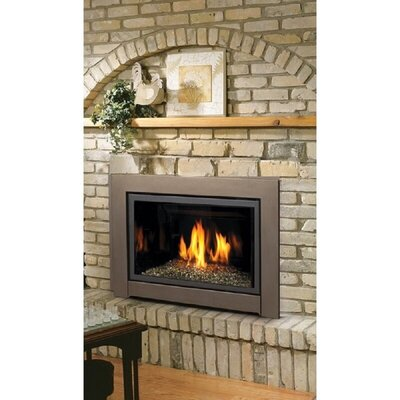 Direct Vent Natural Gas/Propane Fireplace Insert Kingsman Fireplaces Fuel Type: Natural Gas, Ignition Type: Turn Knob to Start (Millivolt)