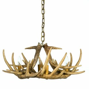 Millwood Pines Rosalind 4-Light Novelty Chandelier