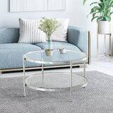 Gympie Coffee Table with Storage by Everly Quinn