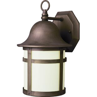 Clearance Seaport Outdoor Wall Lantern By Zipcode Design