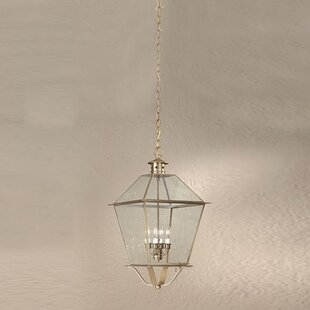 Theodore 4-Light Outdoor Hanging Lantern by Darby Home Co