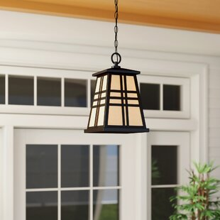 Linjia 1-Light LED Outdoor Hanging Lantern