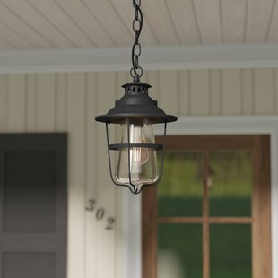 Laurel Foundry Modern Farmhouse Roessler 1-Light Outdoor Hanging Lantern