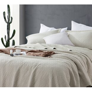 Gracie Oaks Pinkney Softest Stone Washed Quilt