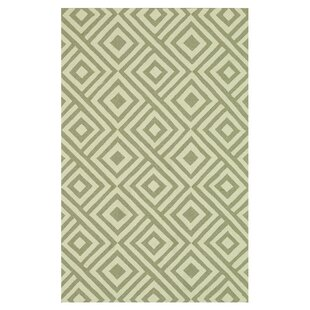Danko Hand-Hooked Gray/Ivory Indoor/Outdoor Area Rug
