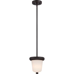 Latitude Run Burhill 1-Light Urn Pendant