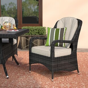 Behm Lounge Chair with Cushions (Set of 2)