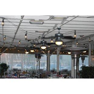 String Light Company 24-Light 48 ft. Globe String Lights