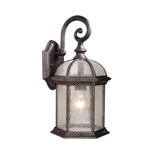 Fleur De Lis Living Brownfield 1-Light Outdoor Wall Lantern
