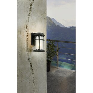 Canora Grey Drane Outdoor Wall Lantern