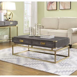 Laforcel Coffee Table with Storage Mercer41