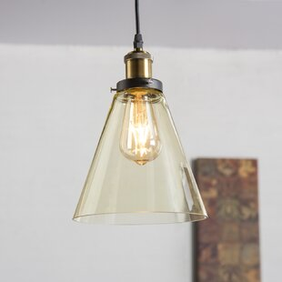 Gracie Oaks Daren 1-Light Cone Pendant