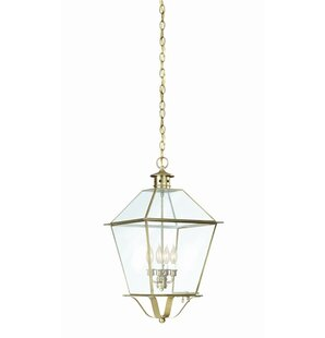 Darby Home Co Theodore 4-Light Outdoor Hanging Lantern