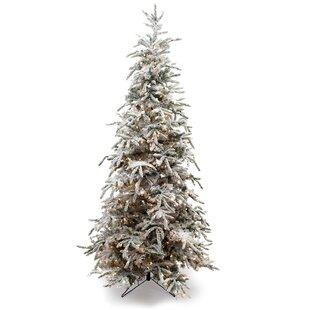 best service bbcf0 6d485 balsam hill christmas tree You'll Love in 2019   Wayfair