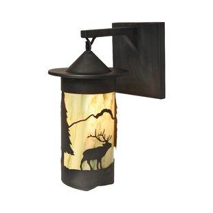 Find a Elk Pasadena Hanging 1-Light Outdoor Wall Lantern By Steel Partners