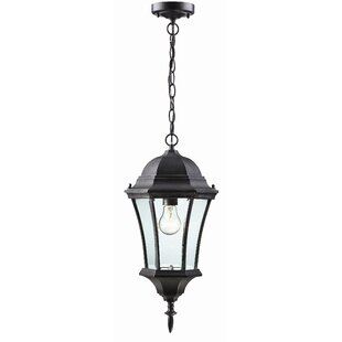 Inexpensive Lyles 1-Light Outdoor Hanging Lantern By Astoria Grand